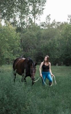 Horses-21